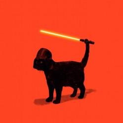 Cat-Vader-print
